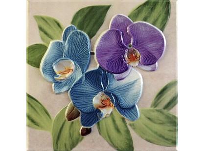 Fabresa Orquideas Placa Decor Malva