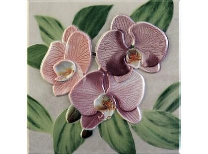 Fabresa Orquideas Placa Decor Rosa
