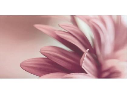 Grupa Paradyz Sorenta Bianco Inserto Kwiaty  A