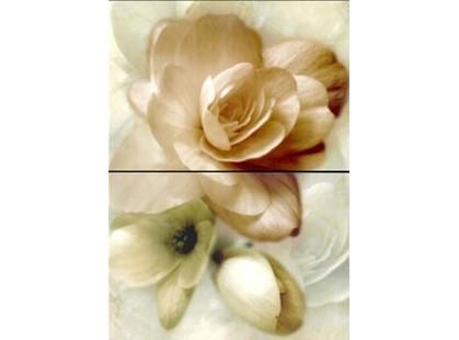 Halcon Ceramicas Romance-Anais Decor Perla