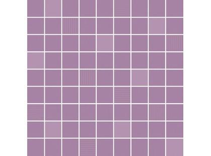 Ibero Fusion Rose Mosaico Purple