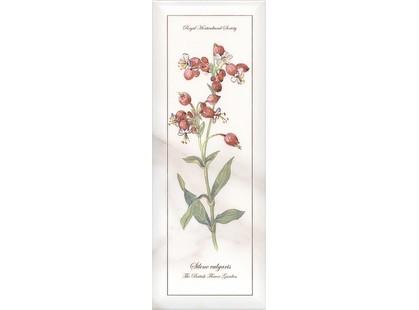 Kerama Marazzi Ноттингем NT\A87\15005  цветы грань