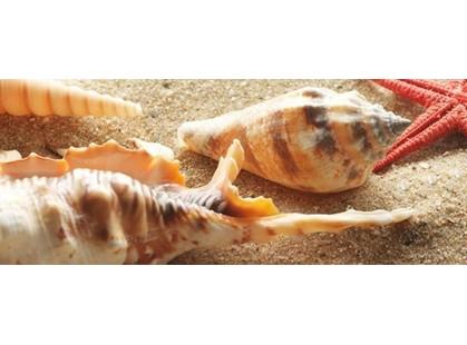 Керамин Сиерра Тип 2 Ракушки/песок