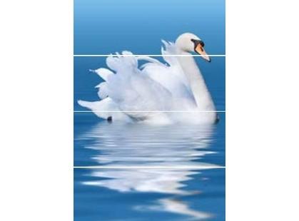 Keros Aquarelle Swan rev. A/B/C/D