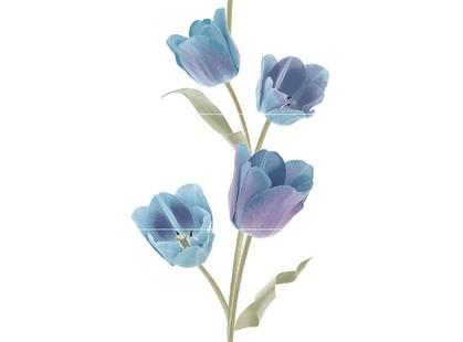 Keros Varna Tulips Frios  (из 3-х плиток)