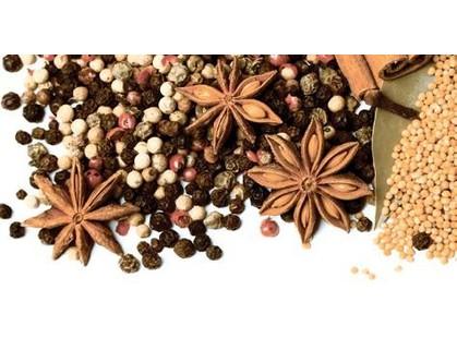 Lasselsberger (LB-Ceramics) Spices 1641-8615 Spices - 1