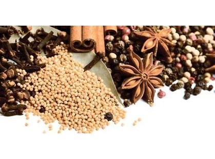 Lasselsberger (LB-Ceramics) Spices 1641-8616 Spices - 2
