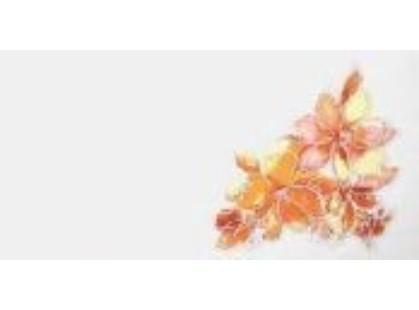 Lasselsberger (LB-Ceramics) Нега Акварель 4 оранжевый 1641-0045