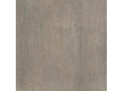 Leonardo Ile De La Cite Sabbia