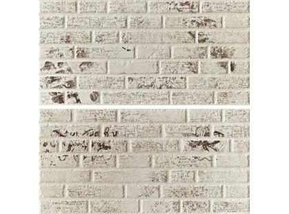 Leonardo Word Up Almond Wallgraffiti Mix