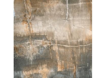 Lord Scultura fossile Bosco