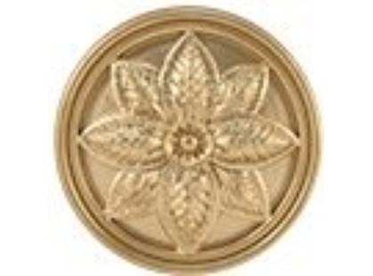 Mapisa Stella Taco  Gold