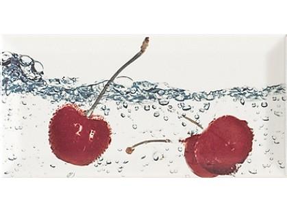 Monopole Ceramica Aqua Decor Cherry
