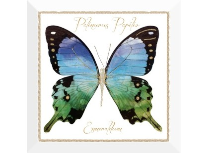 Monopole Ceramica Farfalla Blu