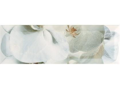 Monopole Ceramica Nirvana Decor 1