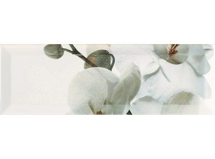 Monopole Ceramica Nirvana Decor 3