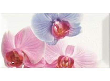 Monopole Ceramica Bisel Decor Orchidea 1