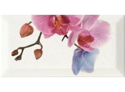 Monopole Ceramica Bisel Decor Orchidea 4