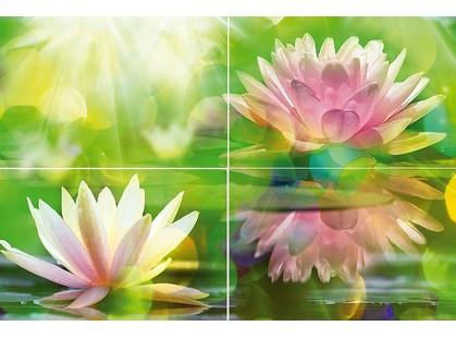 Муза-Керамика Lotus P4D287