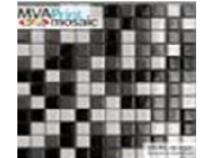 MVAPrintMosaic Мозаика 25FL-S-037