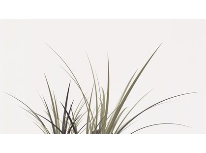Novogres Comfort Motion Blanco (трава)