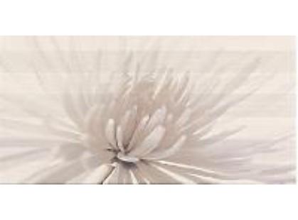 Opoczno Avangarde Flower