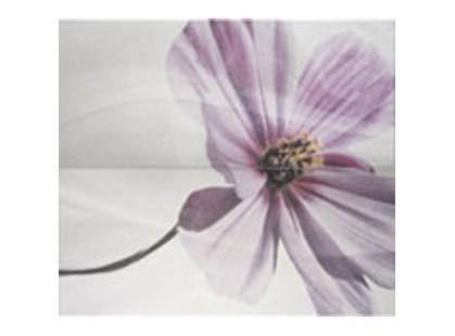 Pamesa Ceramica Stabia Dec. Fragancia Pack Blanco (комп/2шт)