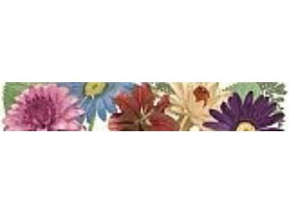 Peronda Femme C.Floral/R