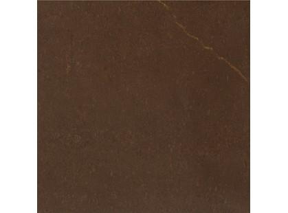 Petracer`s Carisma Marrone-72 Collemandina Originale Lucidato
