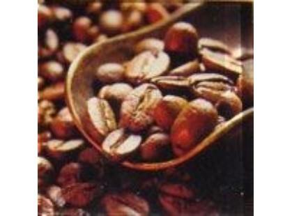 Profilab Coffeemania Coffee-3