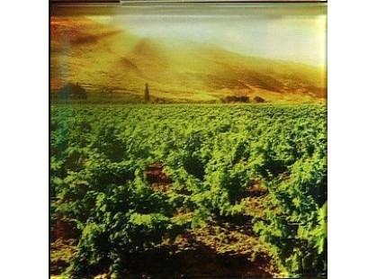 Profilab Vineyard 3