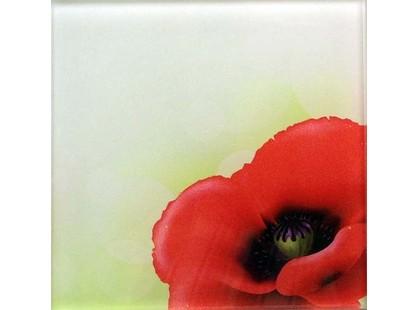 Profilab Wildflowers 1