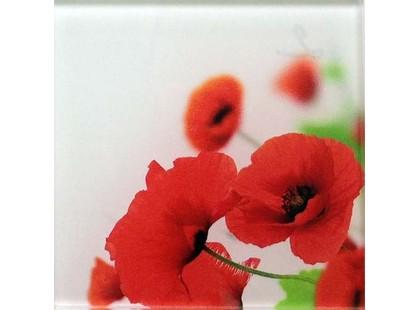Profilab Wildflowers 2