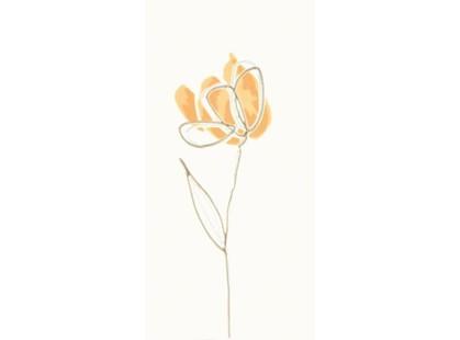 Rako Tulip WITMB009 Оранжевая