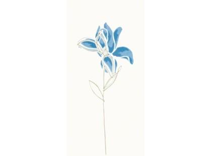 Rako Tulip WITMB010