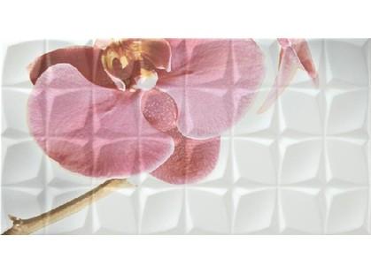 Rocersa ceramic Glamour Dec. Orchid A Blanco BLN
