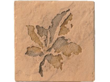Serenissima Cir Quarry stone Inserto Fossili Foglie S/2 Amber