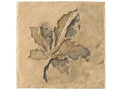 Serenissima Cir Quarry stone Inserto Fossili Foglie S/2 Sand