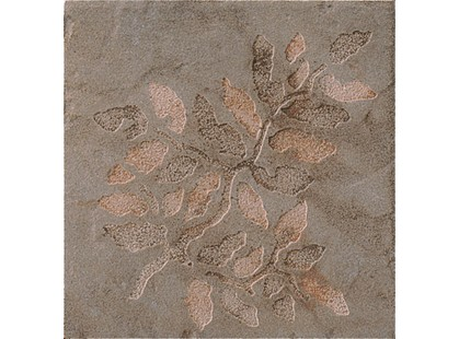 Serenissima Cir Quarry stone Inserto Fossili Foglie S/2 Slate