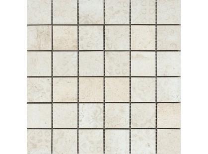 Serenissima Cir Riabita il  Cotto Fabric Shabby Chic Mosaico 5Х5 10,5