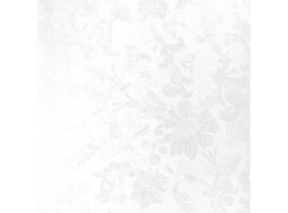 Сокол Андромеда ANF1