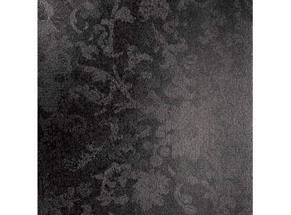 Сокол Андромеда ANF2