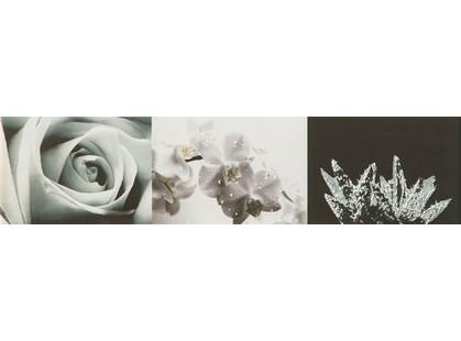 Tubadzin Maxima Black 2 Цветы