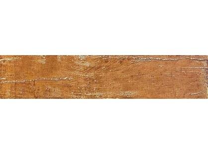 Venus Petrified Forest Golden Brown